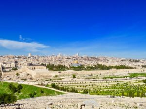 オリーブ山 / Mount of olives