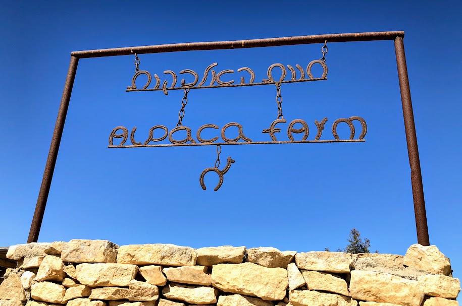 アルパカファーム /Alpaca Farm