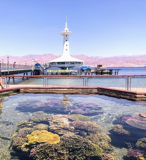 水中展望台海洋公園 / Underwater Observatory Park